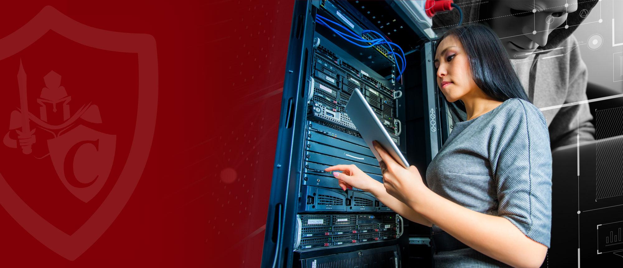 Castellan Information Security Services Inc.